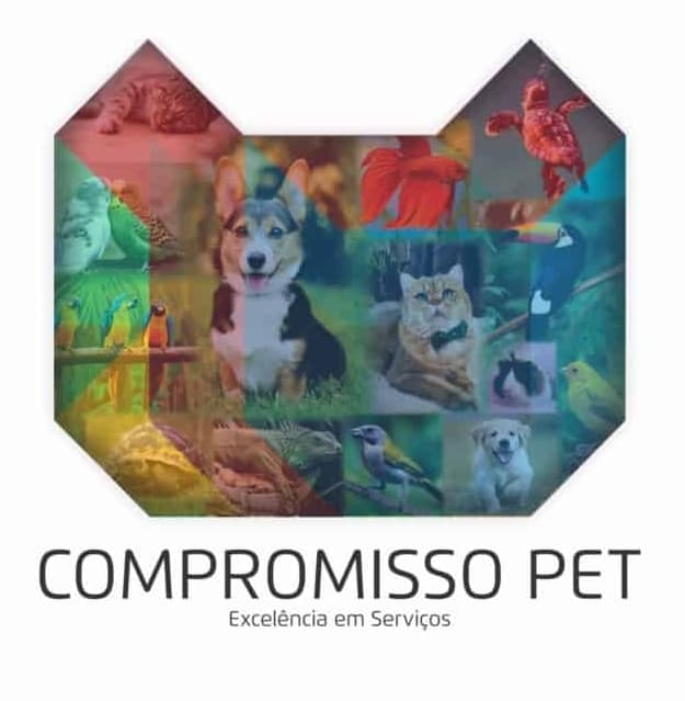 Catalogo Compromisso Pet