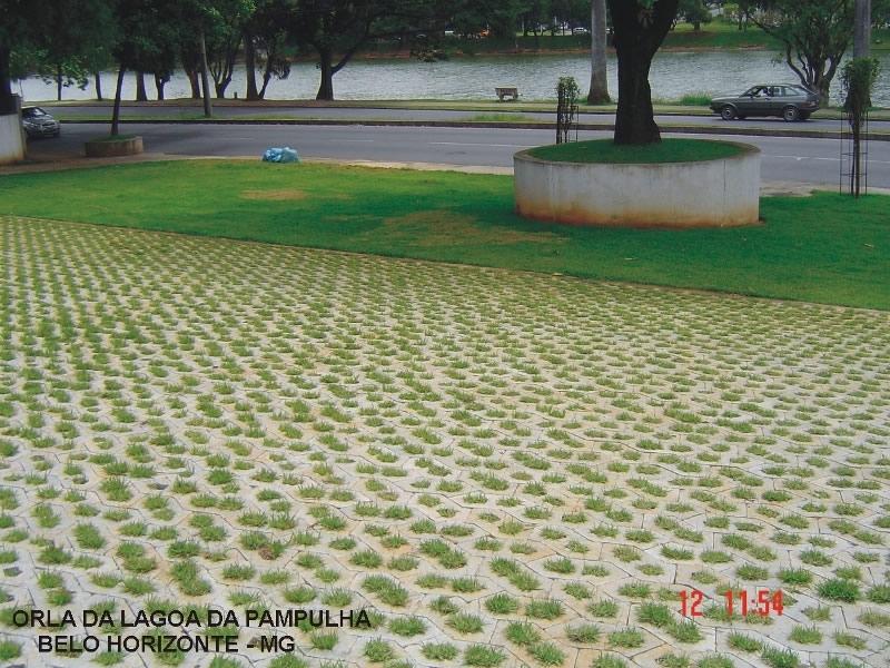 PAVI-GREEN - Foto 7