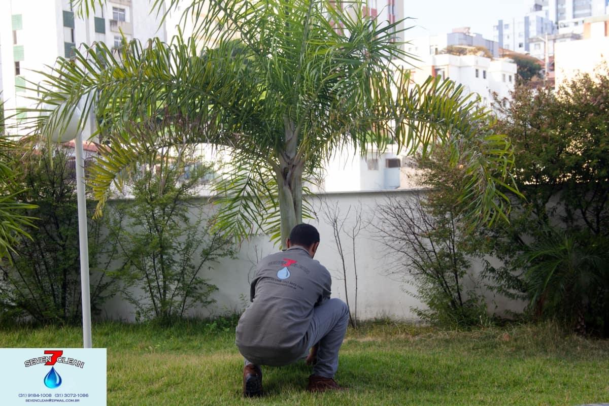 Jardineiro - Foto 1