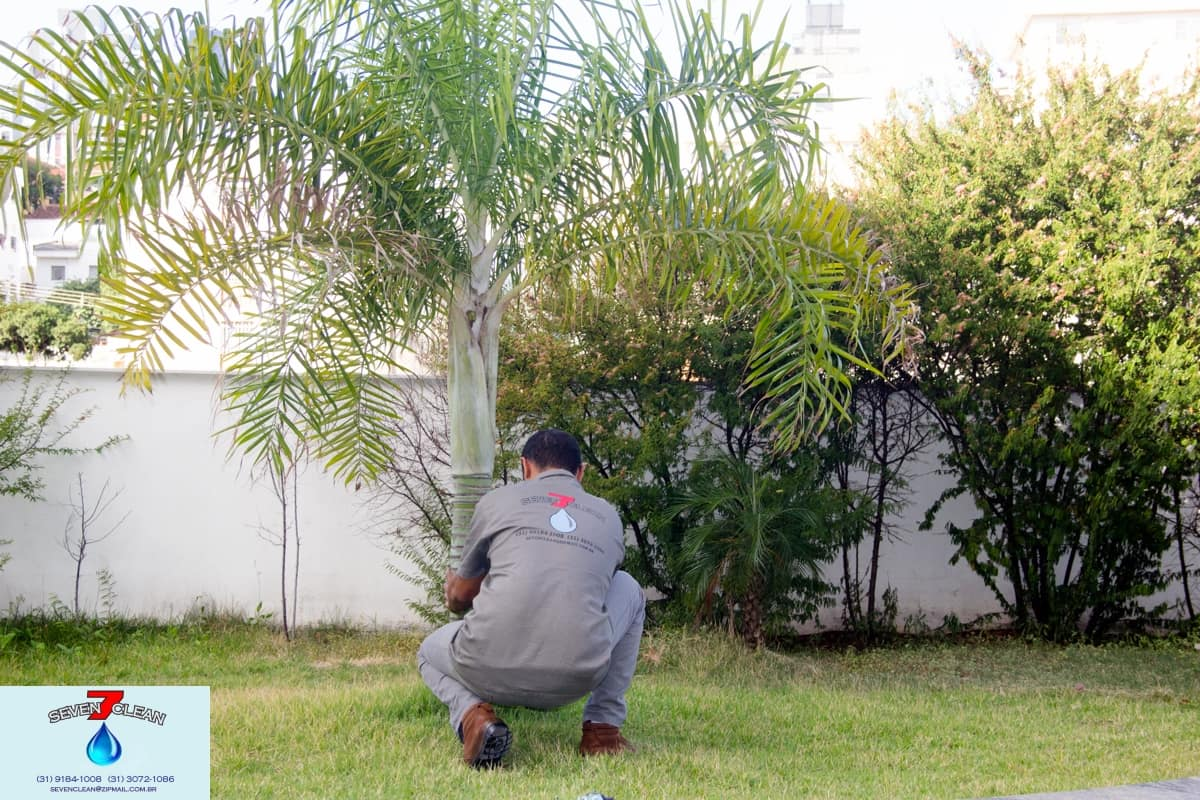 Jardineiro - Foto 2