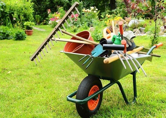 Jardinagem - Foto 12