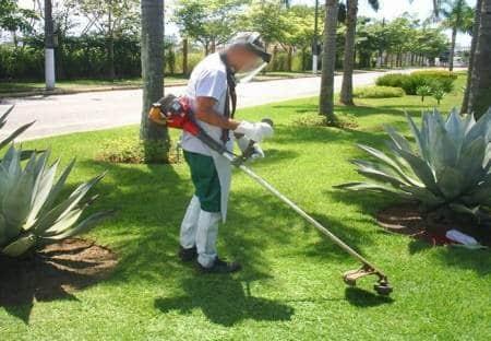 Jardinagem - Foto 16