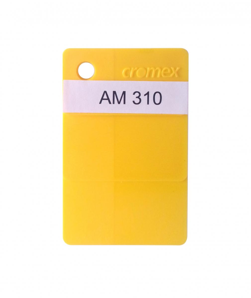 AM 310 - Foto 1