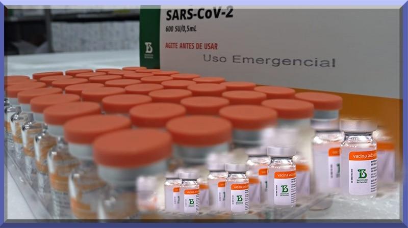 A vacina CoronaVac mostra 83,5% de proteção no ensaio de fase 3