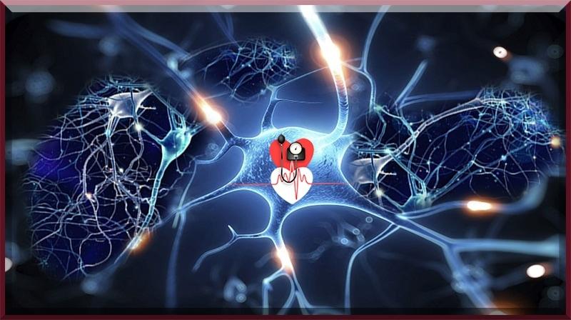Altos níveis de hormônios do estresse podem aumentar o risco de doenças cardiovasculares...