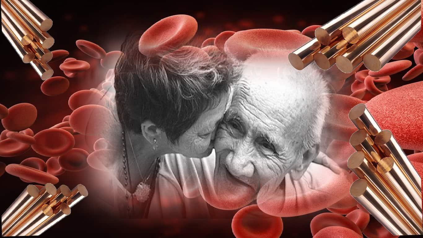 Alzheimer: transporte de cobre no sangue fornece novas pistas