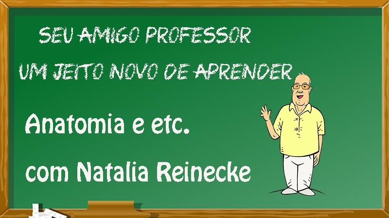 ANATOMIA E ETC. AULAS COM NATALIA REINECKE