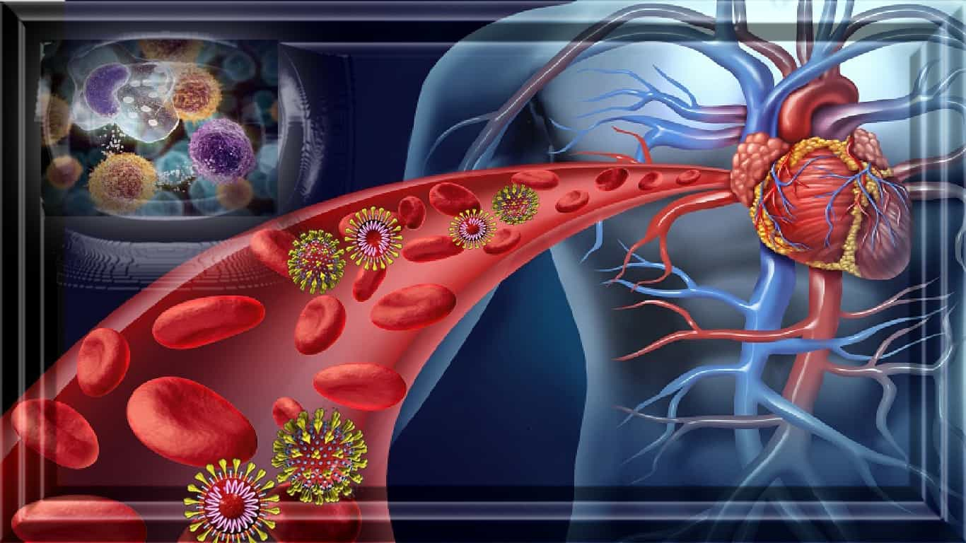 COVID-19: 'Nunca vi sangue pegajoso', diz especialista em trombose