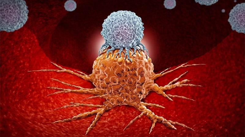 Câncer: Por que o teste de drogas precisa melhorar