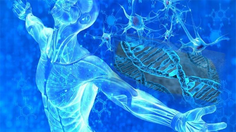 Câncer: tratamento com células-tronco 'pronto para uso' entra em ensaio clínico