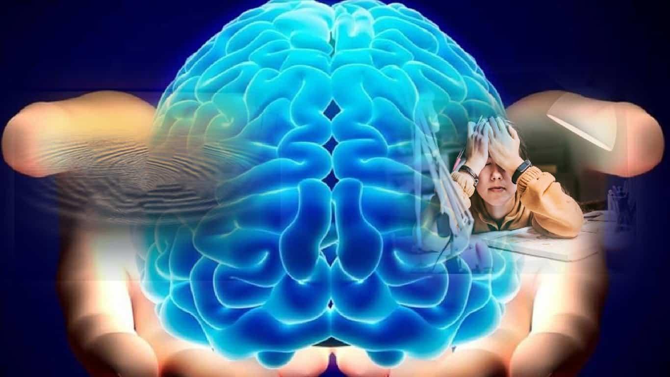 Como o cérebro equilibra sentimentos de estresse e calma