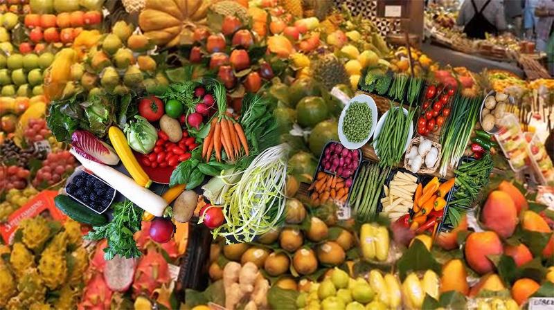 Dietas baseadas em plantas associadas a um risco de diabetes 23% menor