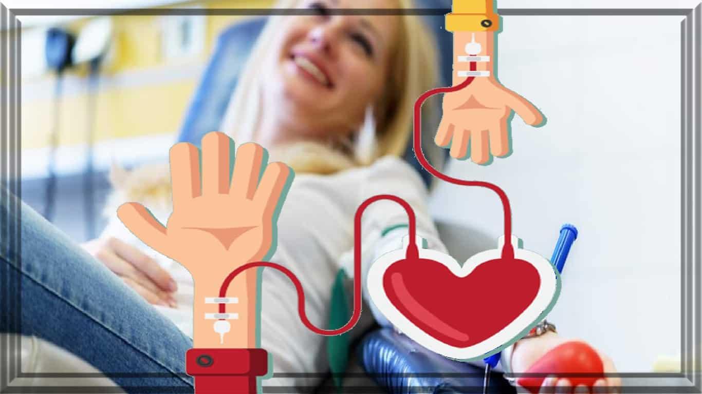 Doação de sangue: 'Completamente altruísta, tanto benefício para tantas pessoas'