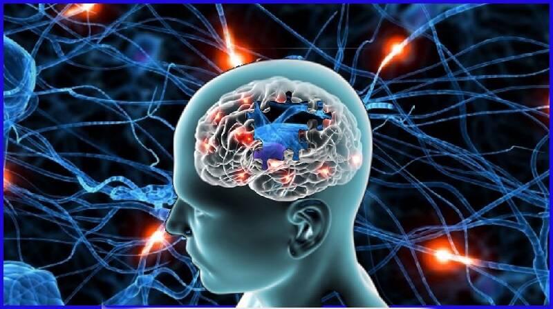 Doença de Alzheimer : Definição, causas, diagnóstico e tratamento