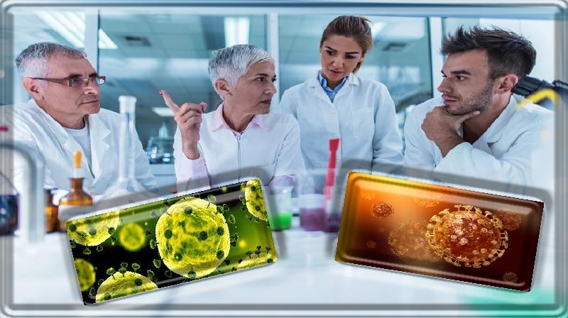 Especialistas condenam 'rumores e desinformação' sobre coronavírus