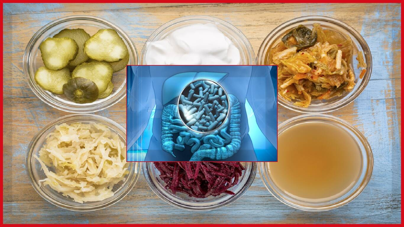 Especialistas em saúde intestinal definem suplementos 'simbióticos'