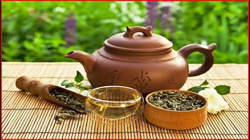 Extrato de chá Oolong pode prevenir câncer de mama