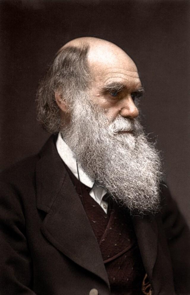 Charles Darwin p Julia Margaret Cameron. 1868