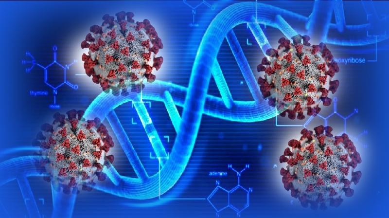 Grande quantidade de variantes do coronavírus encontradas nos Estados Unidos - mas...?