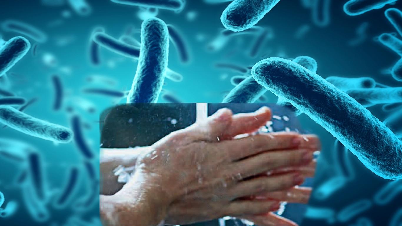 Infecções por E. coli associadas a falta de higiene, alimentos não contaminados