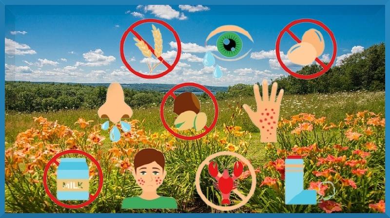 Mitos médicos: tudo sobre alergias