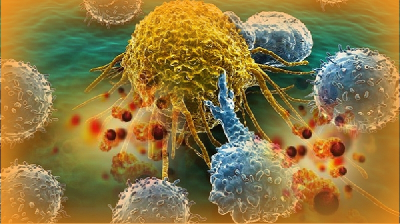 Mitos médicos: tudo sobre câncer