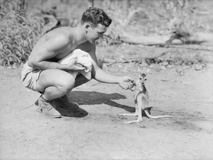 Soldado americano e seu filhote