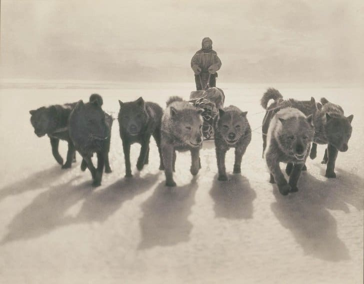 Primeira expedição Antártida