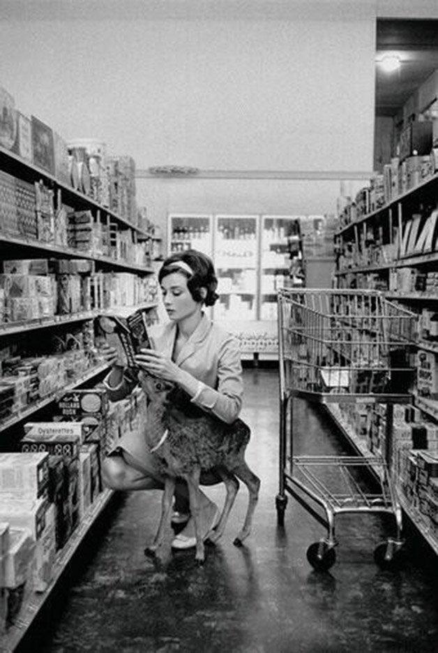 Audrey Hepburn e seu veado de estimação