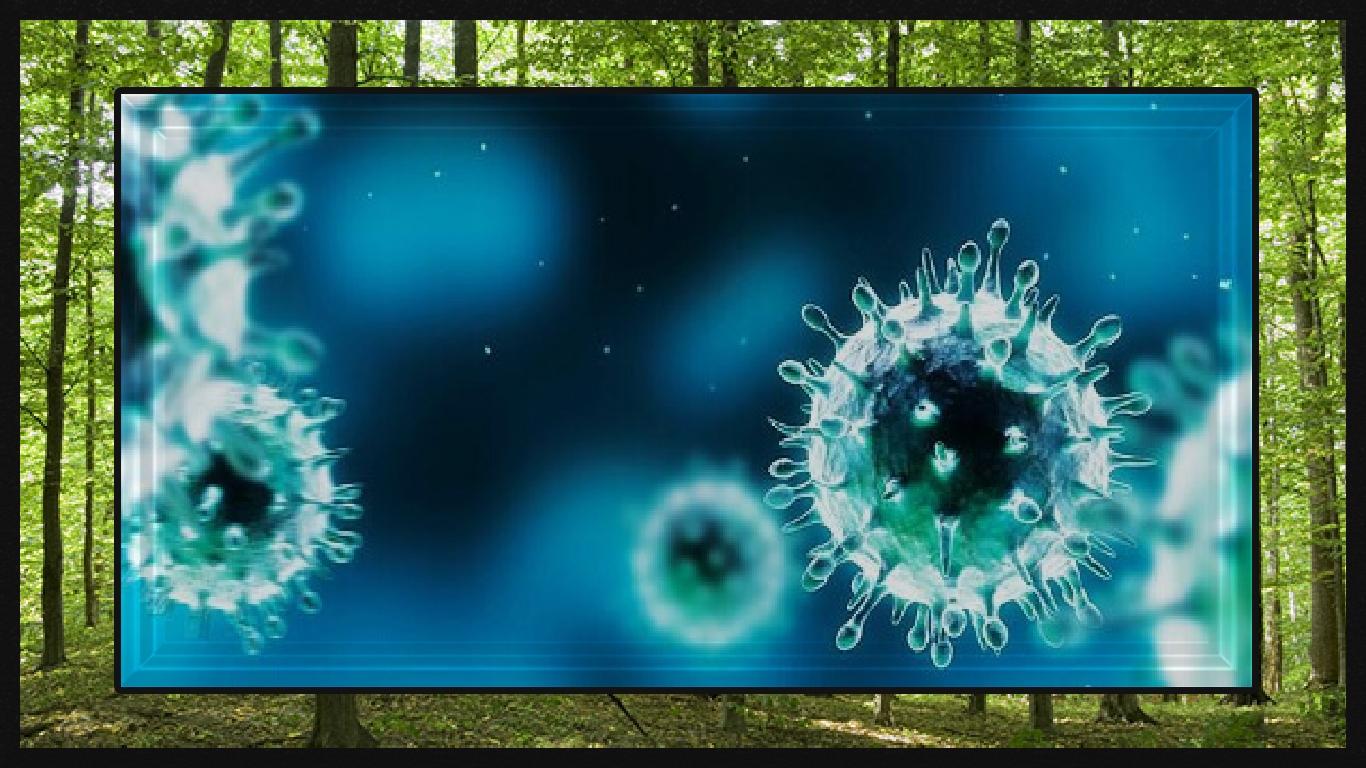 Nova abordagem de terapia genética elimina pelo menos 90% do vírus herpes simplex latente 1