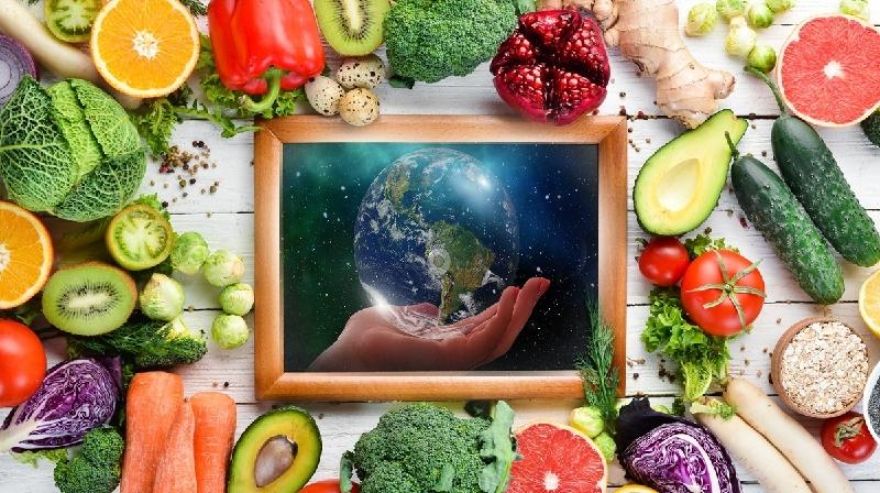 O que aprendemos com o maior estudo de nutrição do mundo?