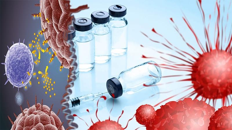 O que é a Imunoterapia contra o câncer? O que há de novo em Imunoterapia?