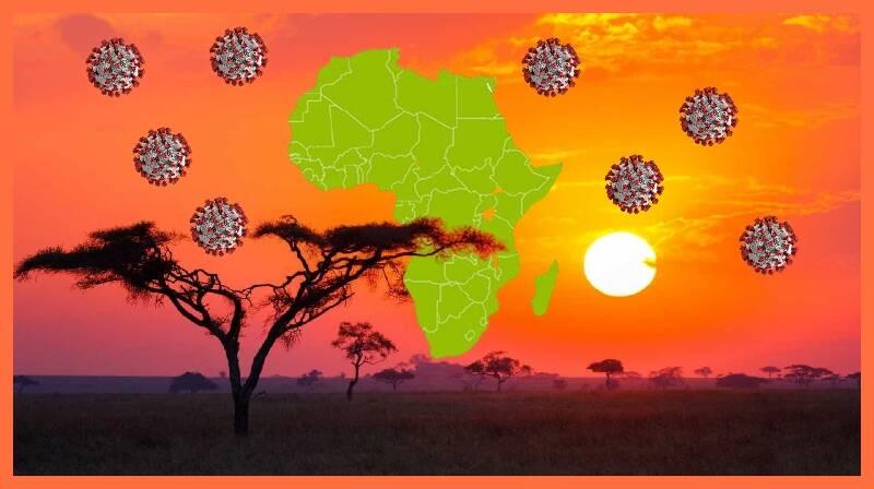 O que explica o sucesso da resposta de África à pandemia COVID-19?