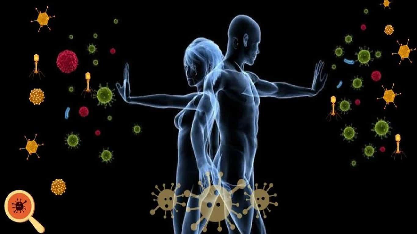 Parte antiga do sistema imunológico pode sustentar COVID grave