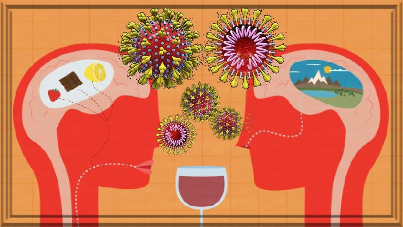 Perda de olfato e paladar validada como sintomas de COVID-19: tem alta taxa de recuperação