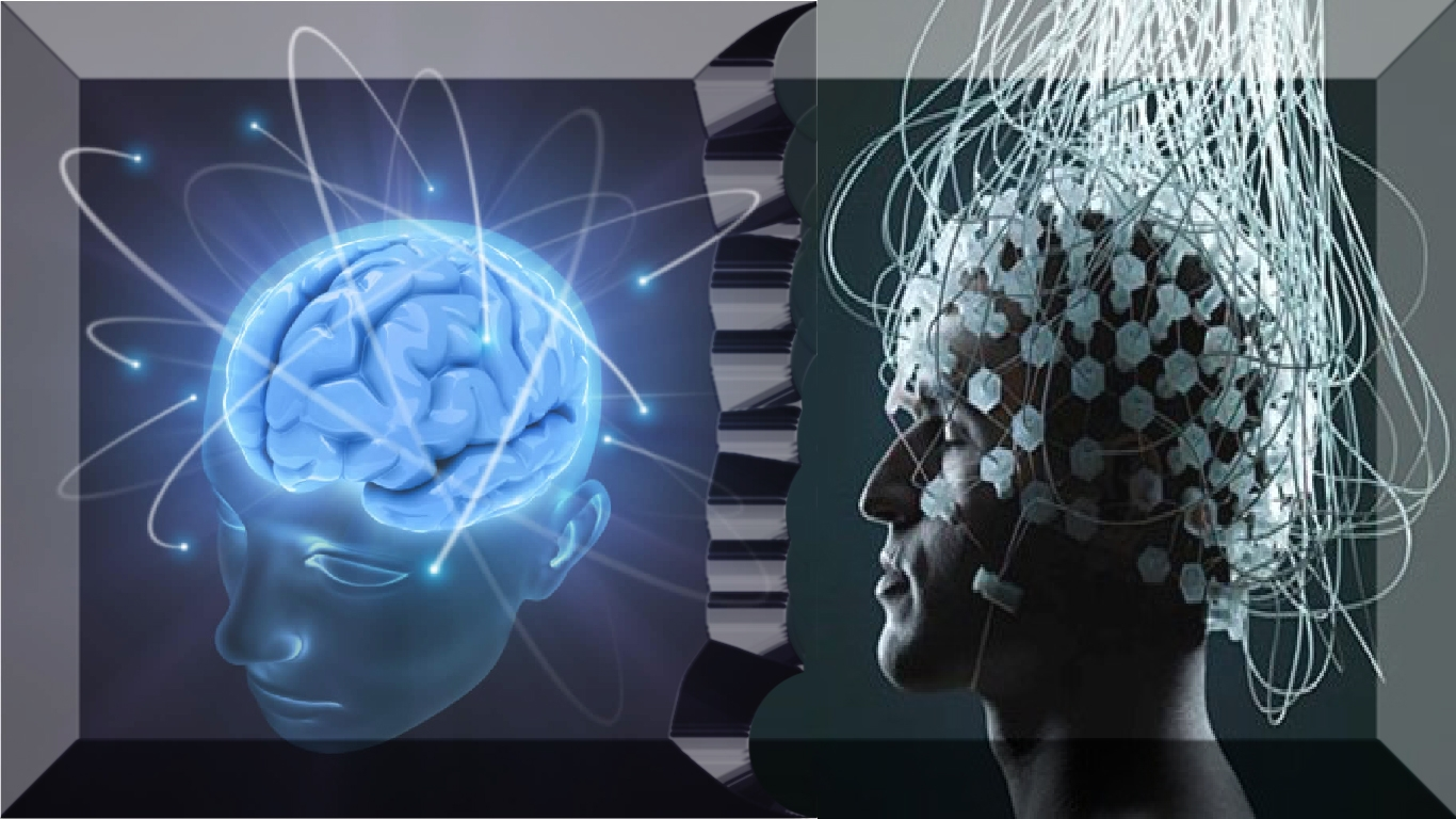 Pesquisa em neurociência: 6 descobertas fascinantes