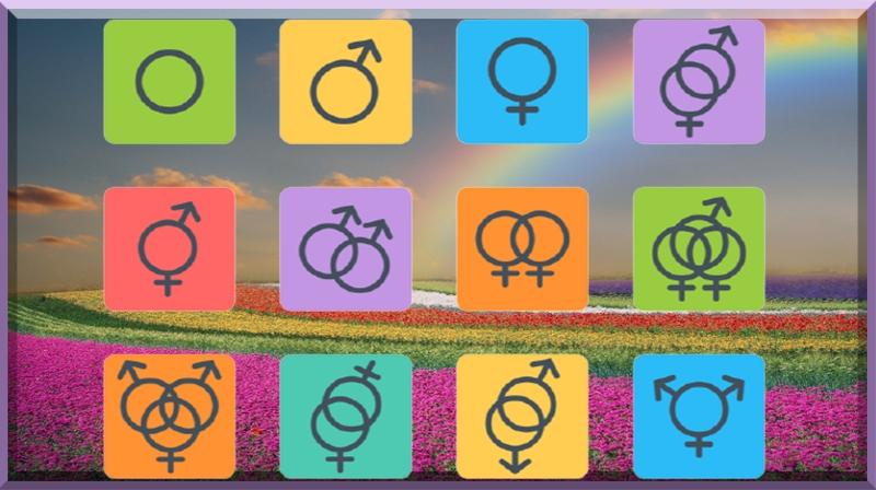 Quais são alguns tipos diferentes de identidade de gênero?
