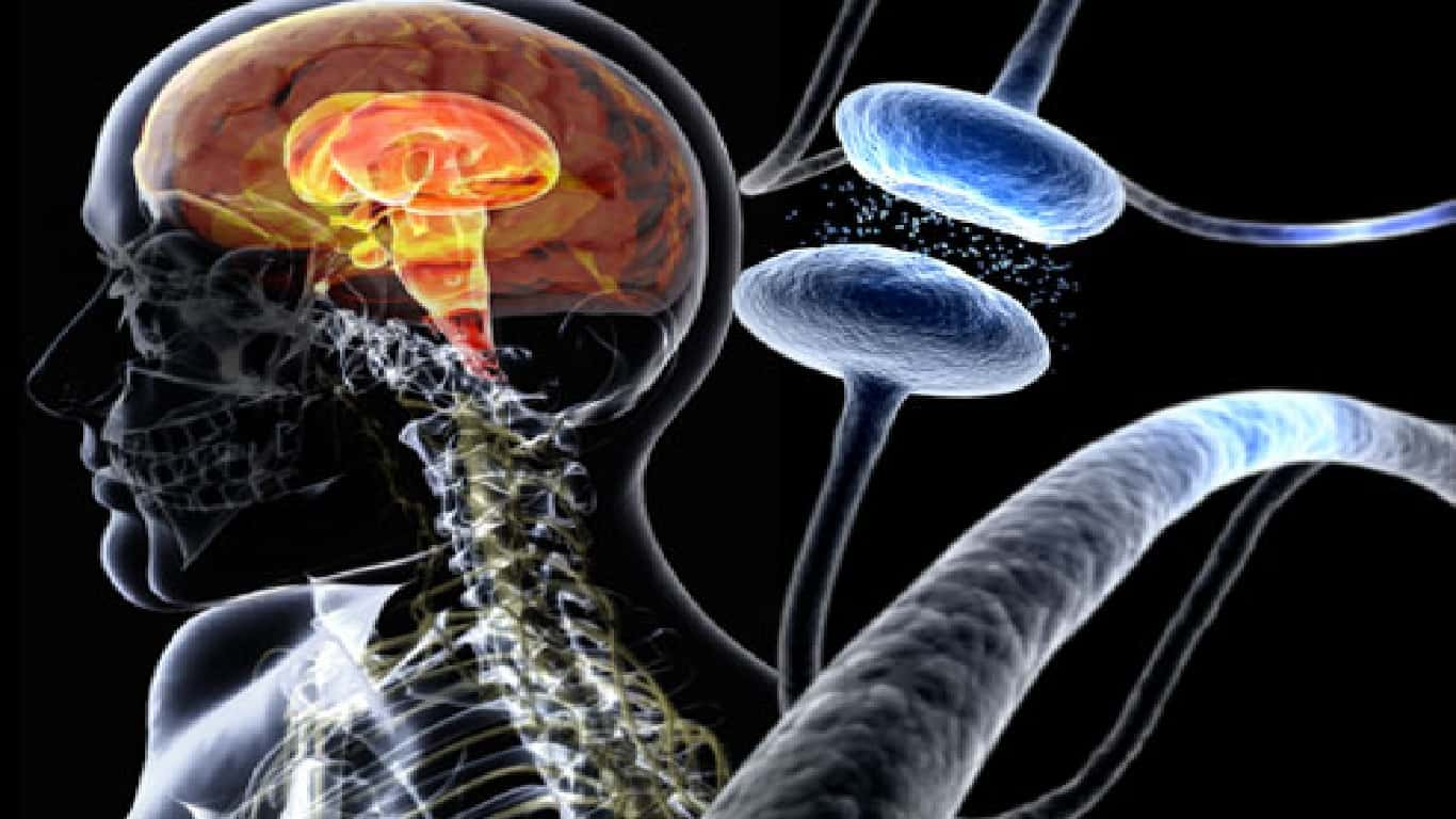 Quais são os fatores de risco para a doença de Parkinson?