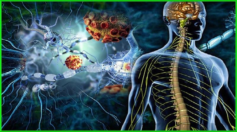 Quais são os primeiros sinais de Esclerose Múltipla?