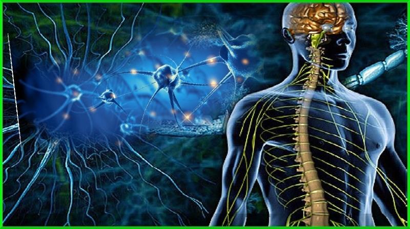 Qual é a diferença entre esclerose múltipla e fibromialgia?