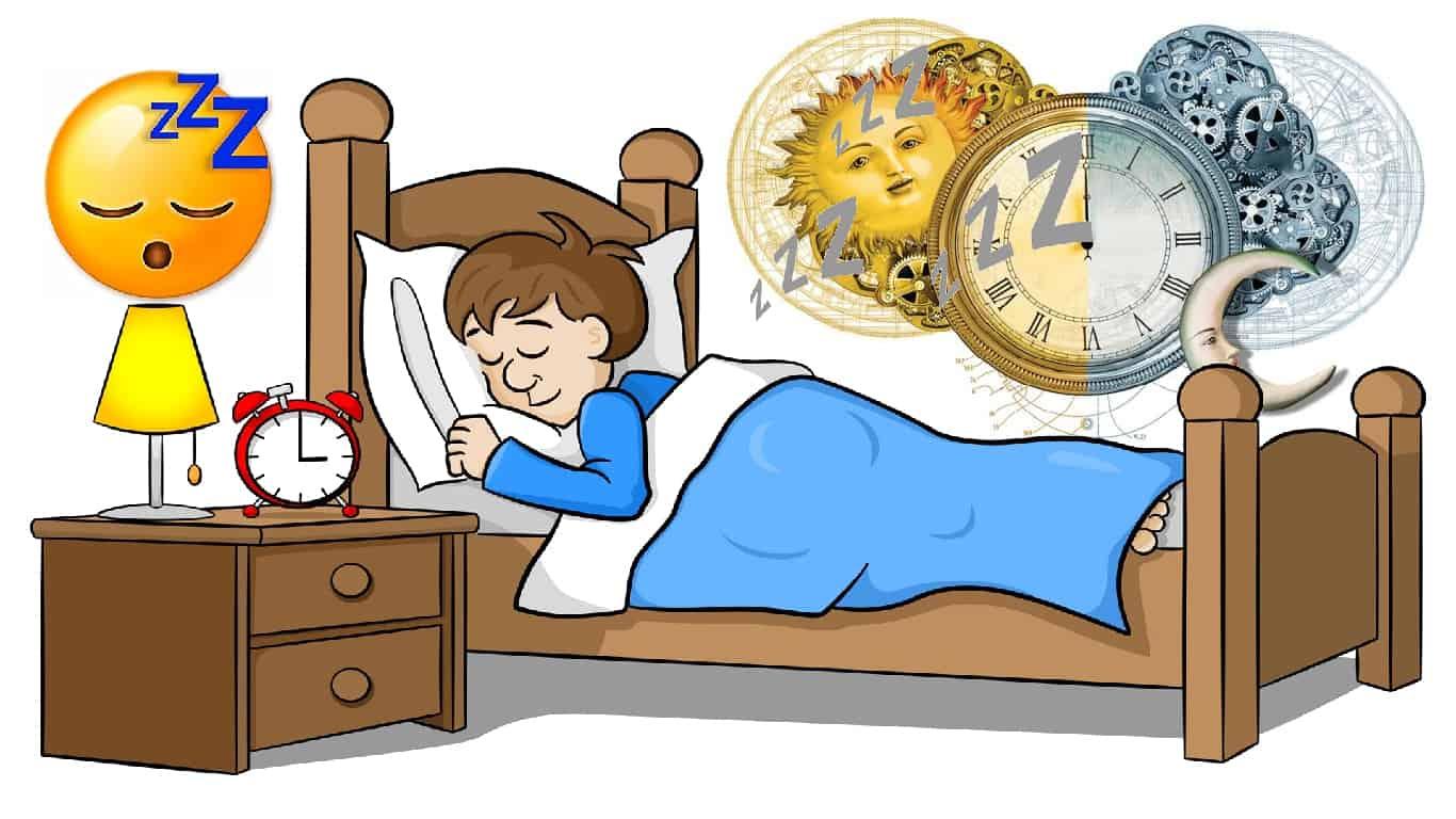 Ritmos de 'relógio biológico', não sono, controle de eliminação de resíduos cerebrais