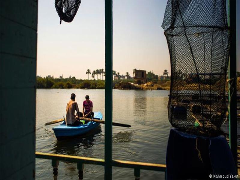 Piscicultura no Nilo