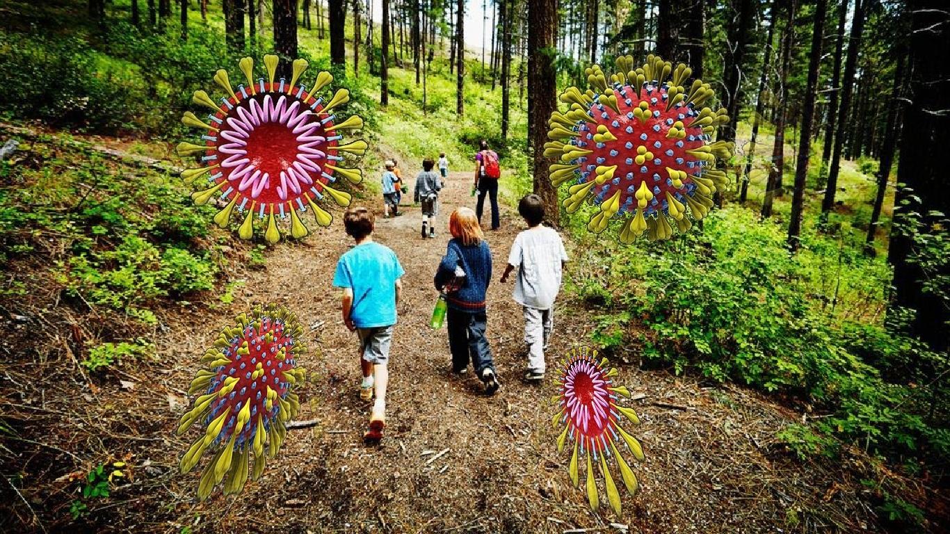 Surto de COVID-19 em um acampamento de verão para crianças pode ser um aviso severo