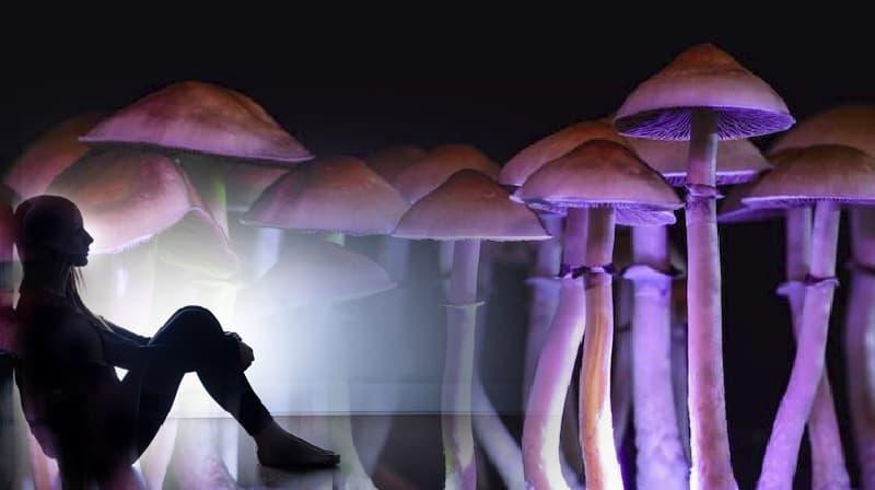 Terapia de cogumelo mágico considerada eficaz no tratamento da depressão