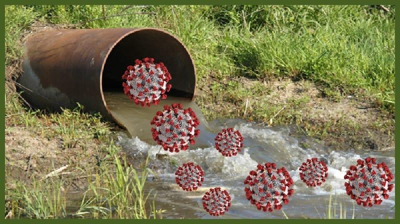 Teste de águas residuais COVID-19 mais responsivo