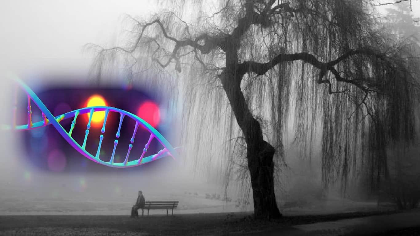 Transtornos do humor no espectro genético