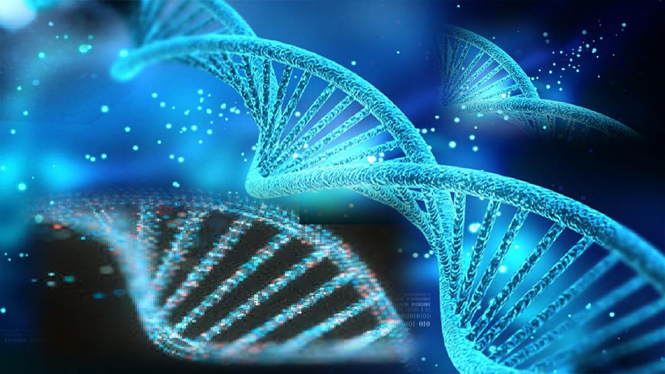'DNA flexível' pode ser a chave para superar memórias assustadoras