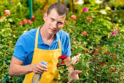 Auxiliar de Jardinagem - Foto 1
