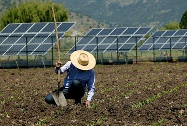 Energia solar na fazenda: 9 dicas para investir em painéis fotovoltaicos para o agronegócio
