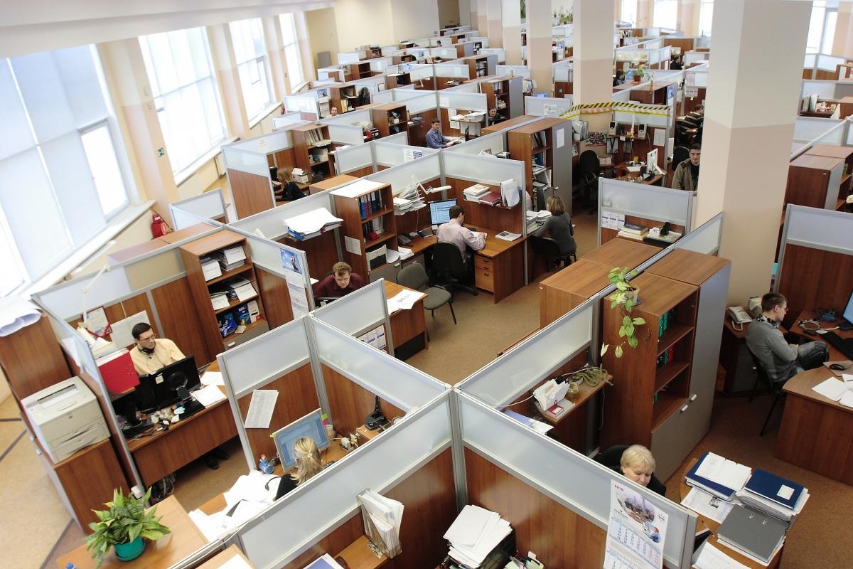 A aplicação do eSocial na Administração Pública